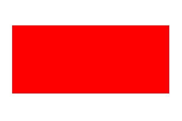 Logotyp CHM